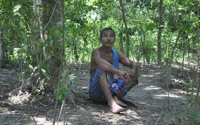 Meet Jadav Payeng, a man who created 550 hectares of forest single-handedly  - The Hindu