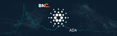 Cardano Price Analysis - Transactions and Active Addresses hit record highs  » Brave New Coin