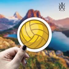 Volleyball Vinyl Sticker Best Friend Gift Laptop Decals Etsy