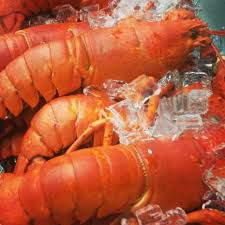 Places to Eat Lobster in Hoboken ...