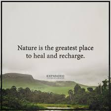 nature heals recharge inspiring quotes about life healing