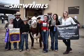 Congrats Abby Bell on her Grand Champion... - The Showtimes, Inc. | Facebook