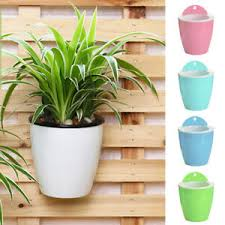 wall hanging flower plant pot planter