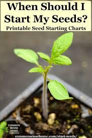 when should i start seeds indoor and