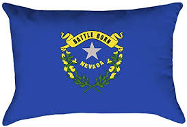 Amazon.com: ArtVerse Katelyn Smith Nevada Flag Pillow - Spun Polyester, 20  x 14, Blue: Home & Kitchen