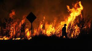Pożary w Australii - katastrofa klimatyczna i festiwal fake newsów