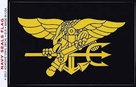 U S Navy Seals Flag Decal Large