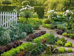 beautiful vegetable gardens plus design
