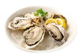 Japanese oyster company wants a place ...