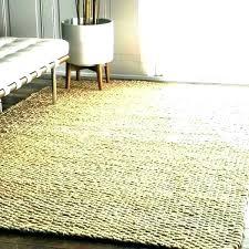 outdoor rug pattern stripe blue