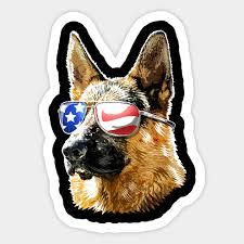 patriotic german shepherd american flag