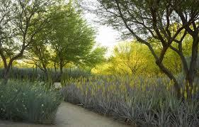 sunnylands center gardens features