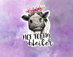 Not Today Heifer Sticker Cow Stickers Cow Sticker Water Etsy In 2020 Heifer Laptop Decal Aesthetic Stickers