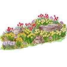 g hyacinth better homes gardens