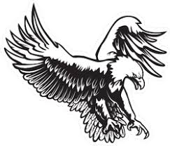Eagle Stickers Car Decals Eagle Vinyl Graphics Car Stickers