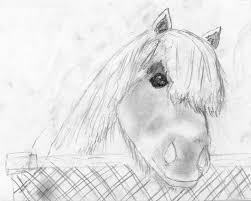 Tekenen Paardengekkenweb Jouwweb Nl