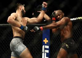 UFC 247: Dominick Reyes feels ...