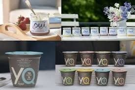 rel s of french style yogurt oui