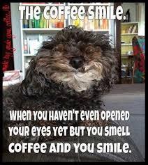 cartoon dog coffee meme com
