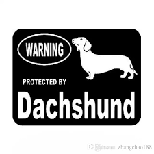 2020 13 3 10cm Warning Protected By Dachshund Vinyl Decal Car Sticker Black Silver Ca 1201 From Zhangchao188 0 96 Dhgate Com