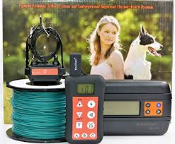 Top 10 Best Invisible Dog Fences In Ground And Wireless 2020