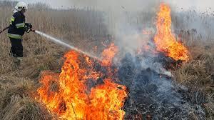 Pożar największego parku narodowego w Polsce - Polsat News