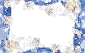 تحميل خلفيات الورود البيضاء الإطار 4k الأزهار المفاهيم إطارات