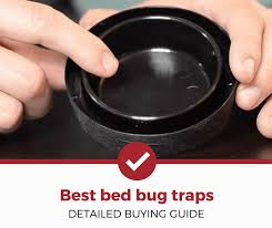 top 5 best bed bug traps 2020 review