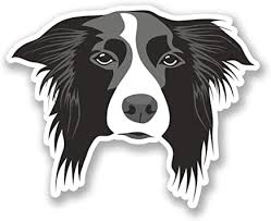 Amazon Com Border Collie Dog Vinyl Sticker Decal Laptop Car Bumper Sticker Travel Luggage Car Ipad Sign Fun 5 Automotive