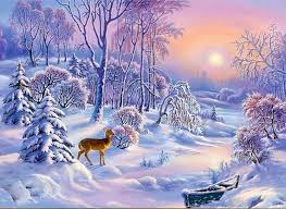 Image result for winter scenery images
