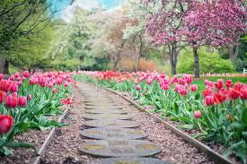 صور حدائق أجمل صور الحدائق الراقية روزبيديا