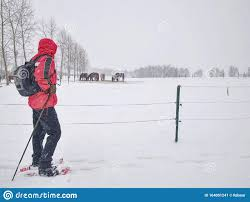 Winter Hiking On Snowshoes At Electric Fence Of Horse Paddock Stock Image Image Of Adult Breast 164051241