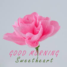good morning sweetheart flowers for