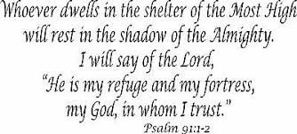 Psalm 91 12 11 X22 Bible Verse Wall Decal By Scripture Wall Art Decor Ebay
