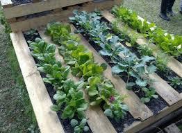 wonderful diy pallet garden planter