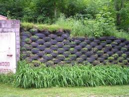 Recycled Tire Retaining Wall Garden Projects Landscape Design Diy Fence