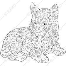 Coloring Pages For Adults Siberian Husky Dog Adult Coloring