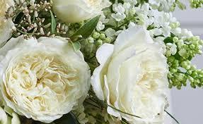 david austin wedding roses luxury cut
