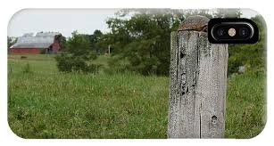 Turtle On A Fence Post Iphone X Case For Sale By Bill Hughey