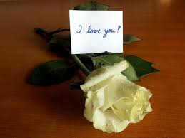 photo of i love you rose message white