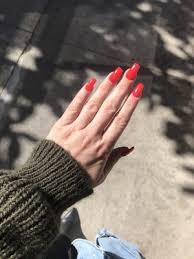 nail salon 1481 solano ave albany ca