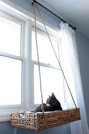10 Tricks For Living With Pets Kids In A Small Space Room Makeovers To Suit Your Life Hgtv