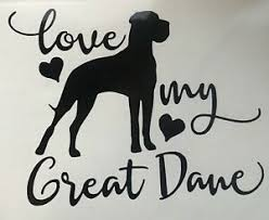 Great Dane Vinyl Bumper Sticker Animal Funny Car Vehicle Decal Dog Vet Groomer Ebay