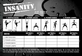 insanity fit test review dig deeper