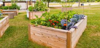raised bed gardening tlc garden centers
