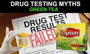 mon myths about urine testing