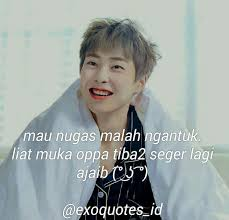 ▷ official exo quotes exoquotes id • instagram