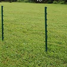 Amazon Com Fi Shock P 30g Green Garden Post For Fence 25 Pack 30 Garden Outdoor