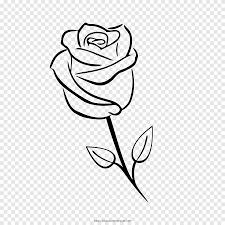 الورود حديقة الرسم كتاب تلوين وردة أبيض قلم رصاص Png Pngegg