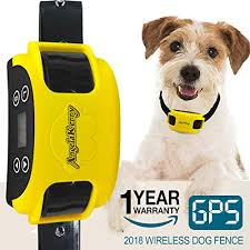 15 Best Electric Dog Fence Brands Of 2019